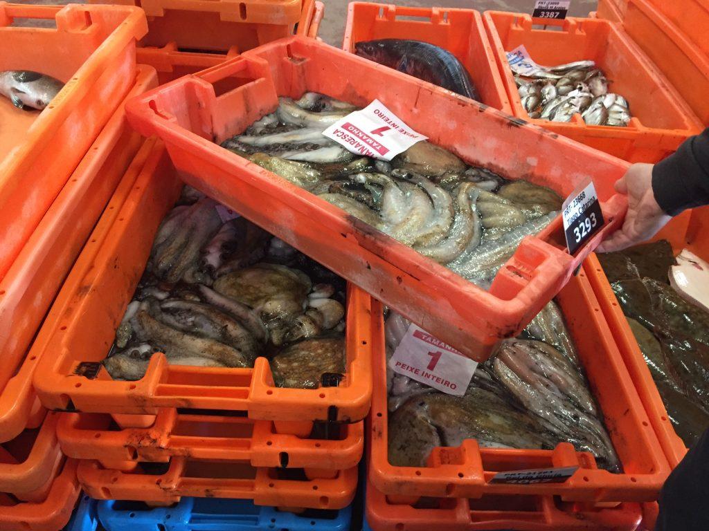 Valor do pescado comercializado nas lotas  subiu 3,3%, para 137,2 ME