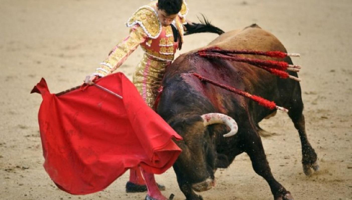 PAN apresenta hoje projeto de lei para abolir touradas em Portugal