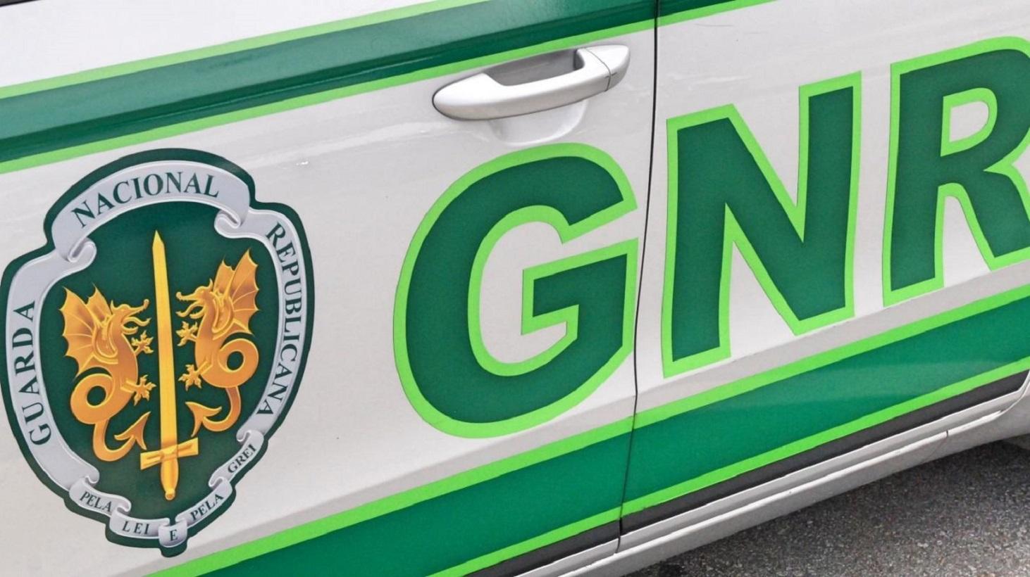GNR faz nove detenções e apreende mais de 100 pés de canábis