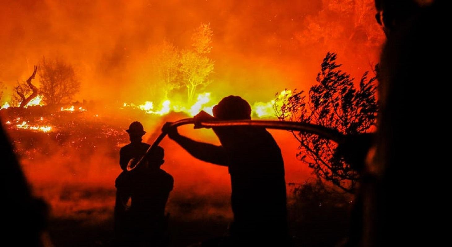 Fogo que deflagrou sexta-feira no Soajo já foi dominado