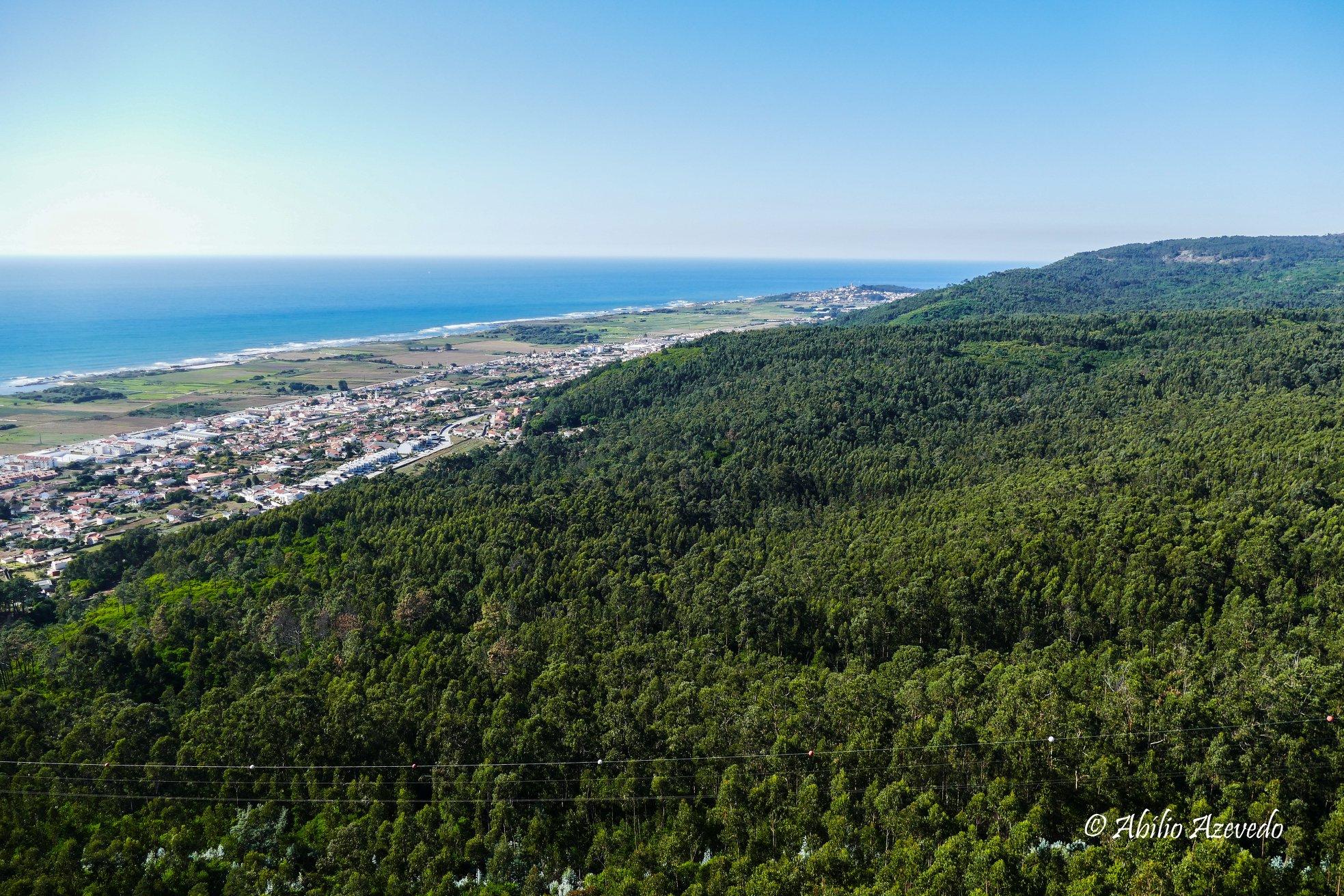 Viana, Valença, Cerveira entre os 18 municípios que pediram financiamento para limpeza da floresta