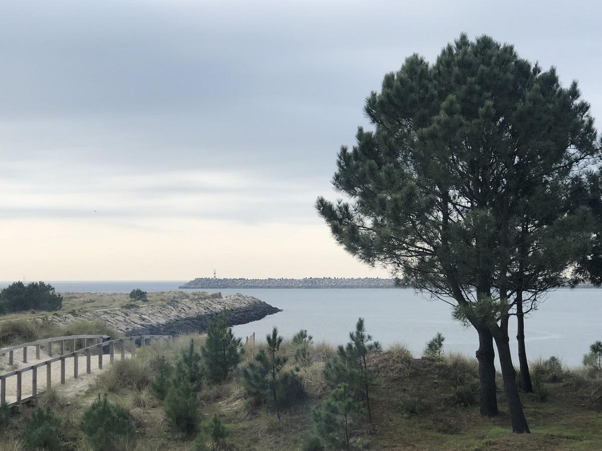 Viana do Castelo entre as 10 cidades costeiras mais bonitas de Portugal