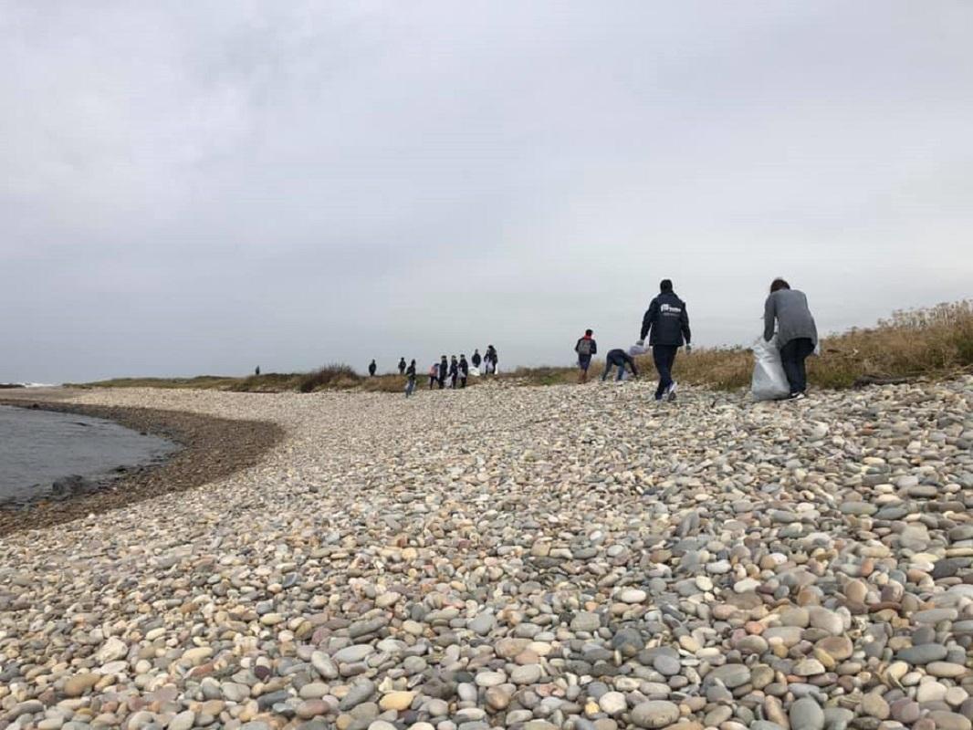 Viana do Castelo avança com mais uma ação de Voluntariado Ambiental