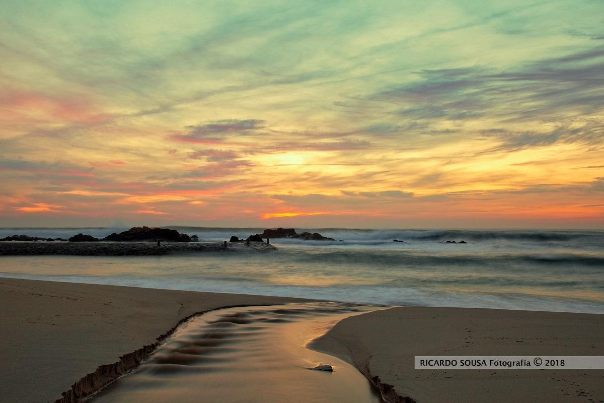 Consulta pública de Plano costeiro Caminha-Espinho recolhe 355 participações