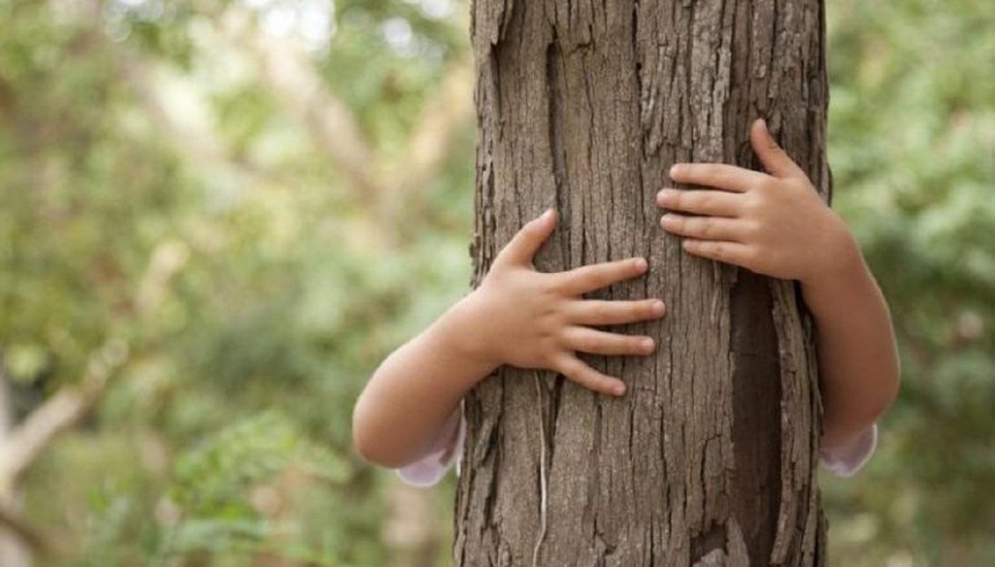 Abraço à Floresta junta mais de 1.700 alunos em Arcos de Valdevez