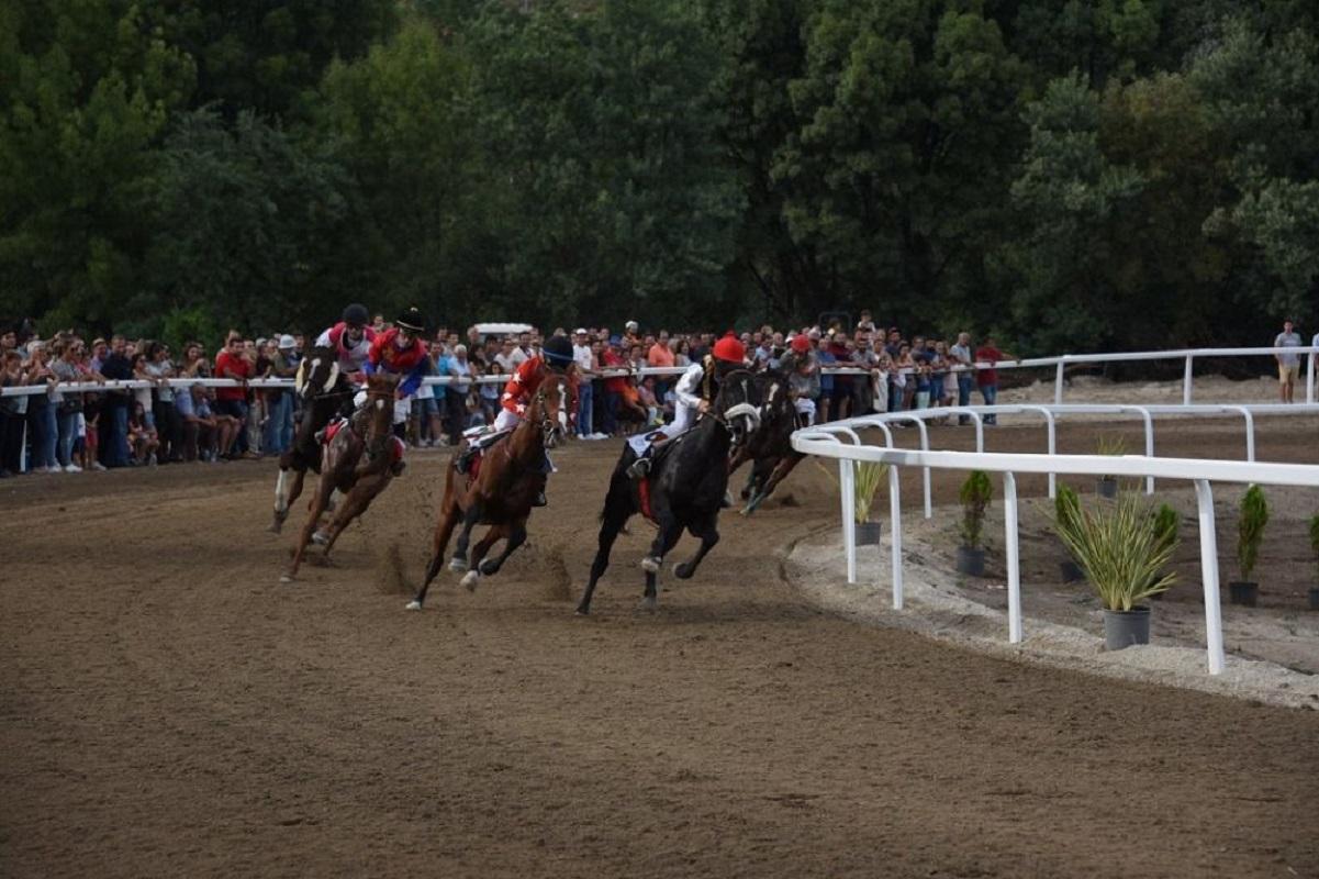 Ponte da Barca acolhe corrida de cavalos para campeonato de torre e galope