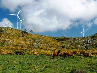 Municípios da Serra d'Arga aprovam criação de Área de Paisagem Protegida