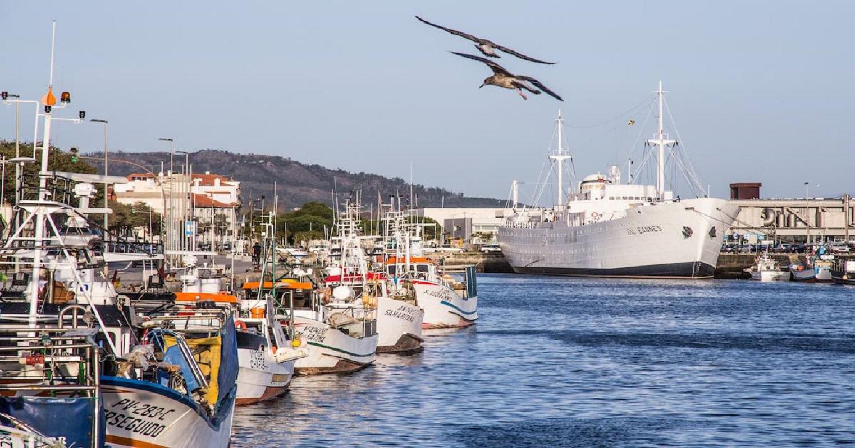 Embarcações de pesca costeira bloquearam navio que instala cabo submarino ao largo de Viana