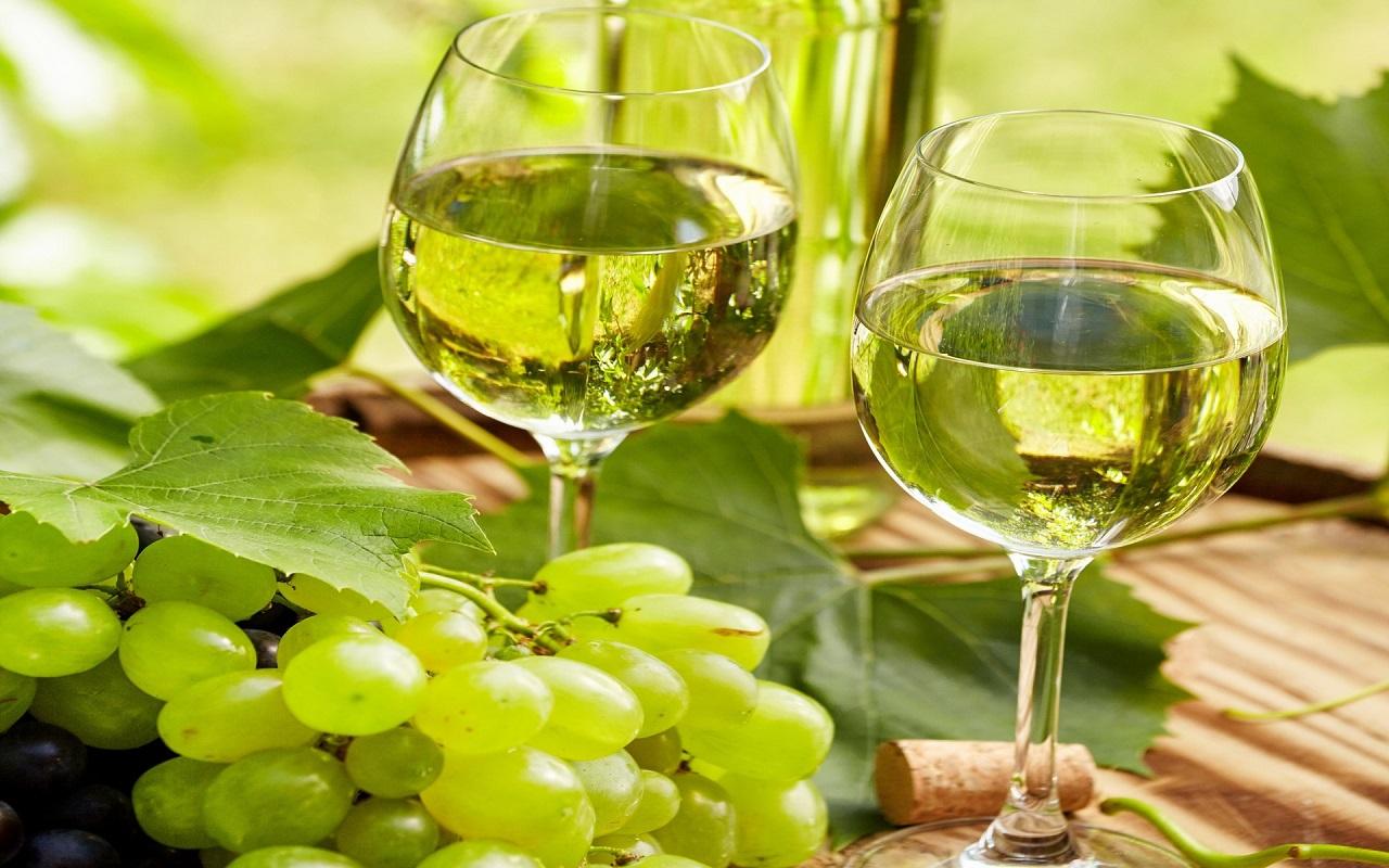 Produtores de vinho verde abrem portas ao público