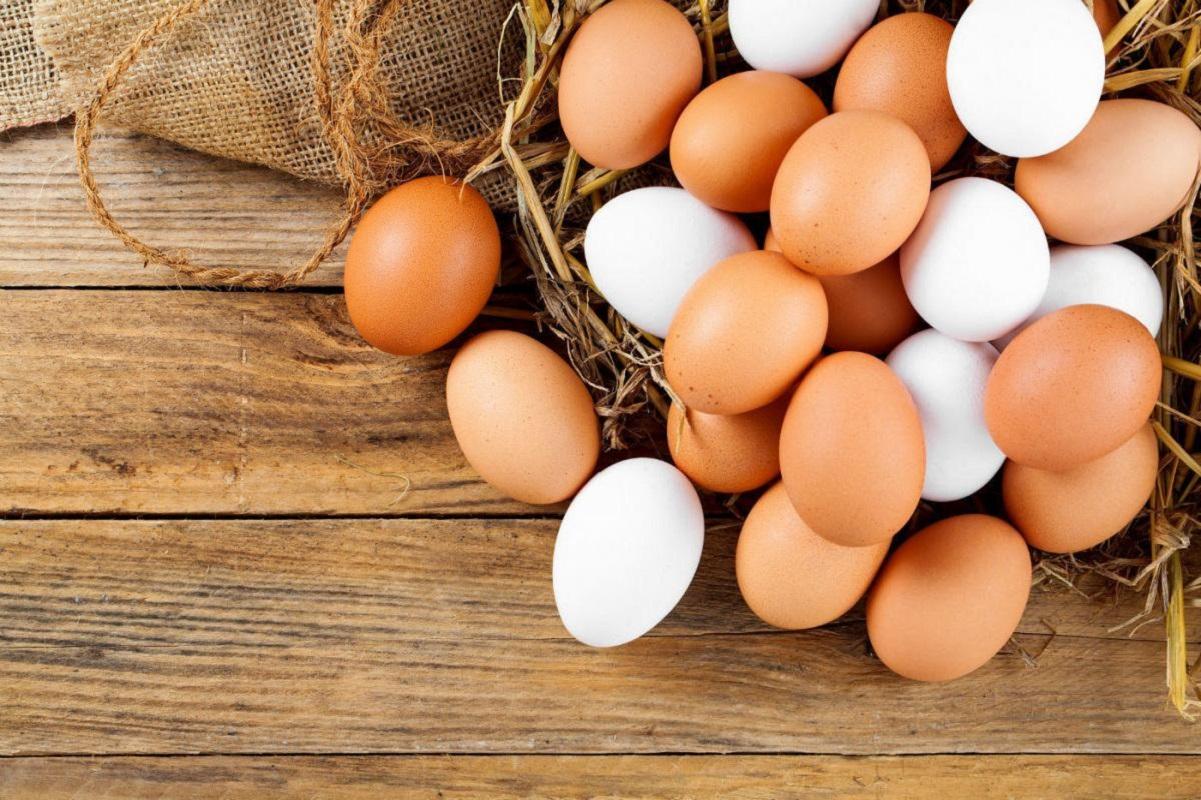 Sabe identificar a origem dos ovos?