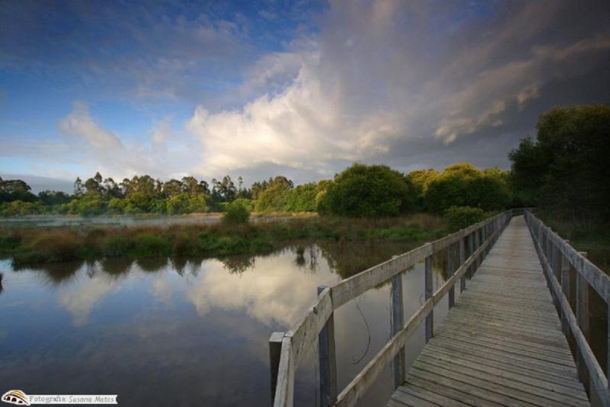 Área de Paisagem Protegida das Lagoas de Bertiandos celebra 19 anos
