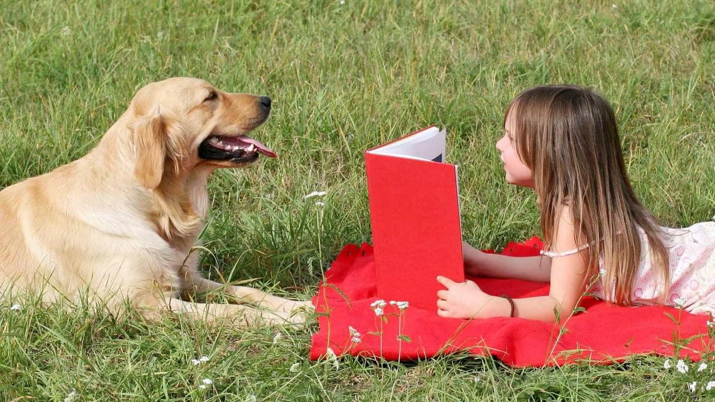 Estudo revela que cães motivam crianças a ler mais