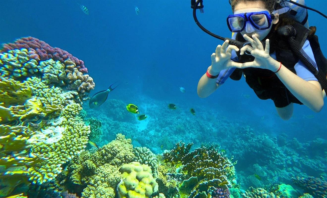 Projeto Kids-Dive promove batismos de mergulho e descoberta do oceano junto das crianças