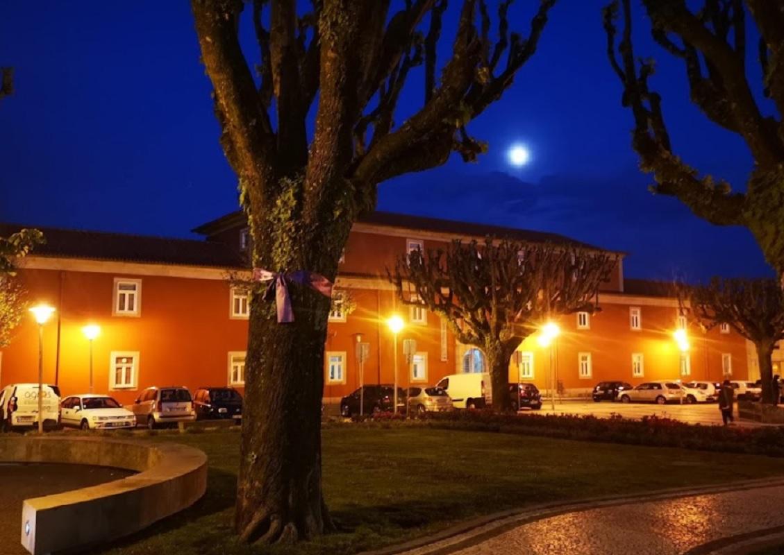 Vinte e quatro estudantes internacionais permanecem em duas residências do IPVC