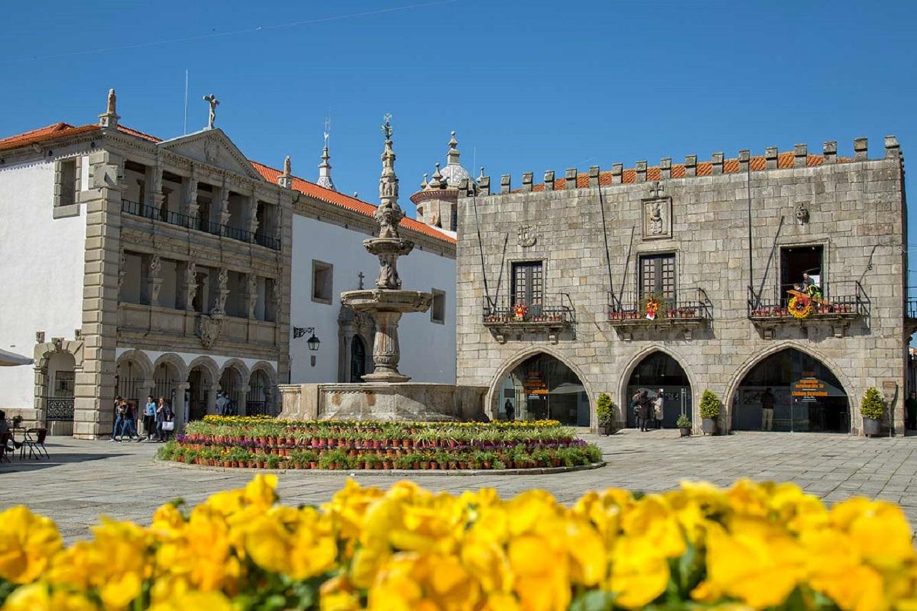 Projetos municipais para estimular negócios e projetos artísticos em Viana recebem 50 candidaturas