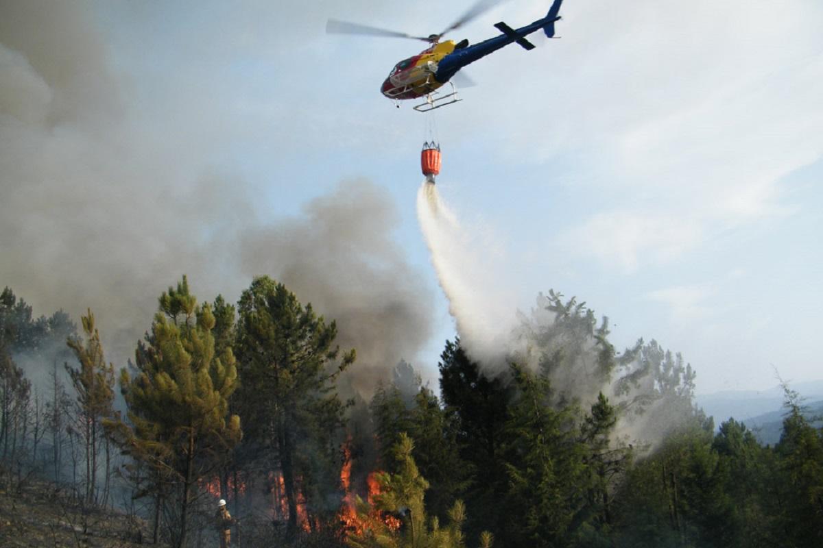 Incêndios: Cerca de 90 concelhos em risco máximo