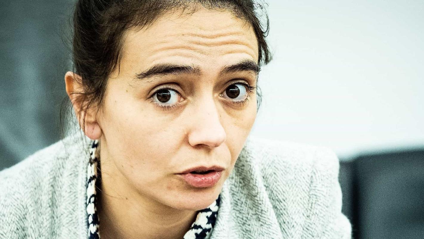 Bloco de Esquerda questiona Governo sobre Linha de Alta Tensão no Alto Minho