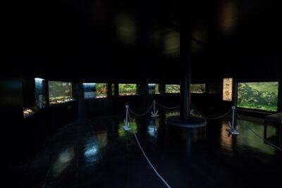 Aquamuseu do Rio Minho promove atividades no Dia Mundial do Turismo