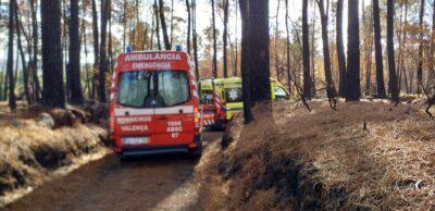 Homem de 59 anos morre ao ser atingido por árvore em Monção
