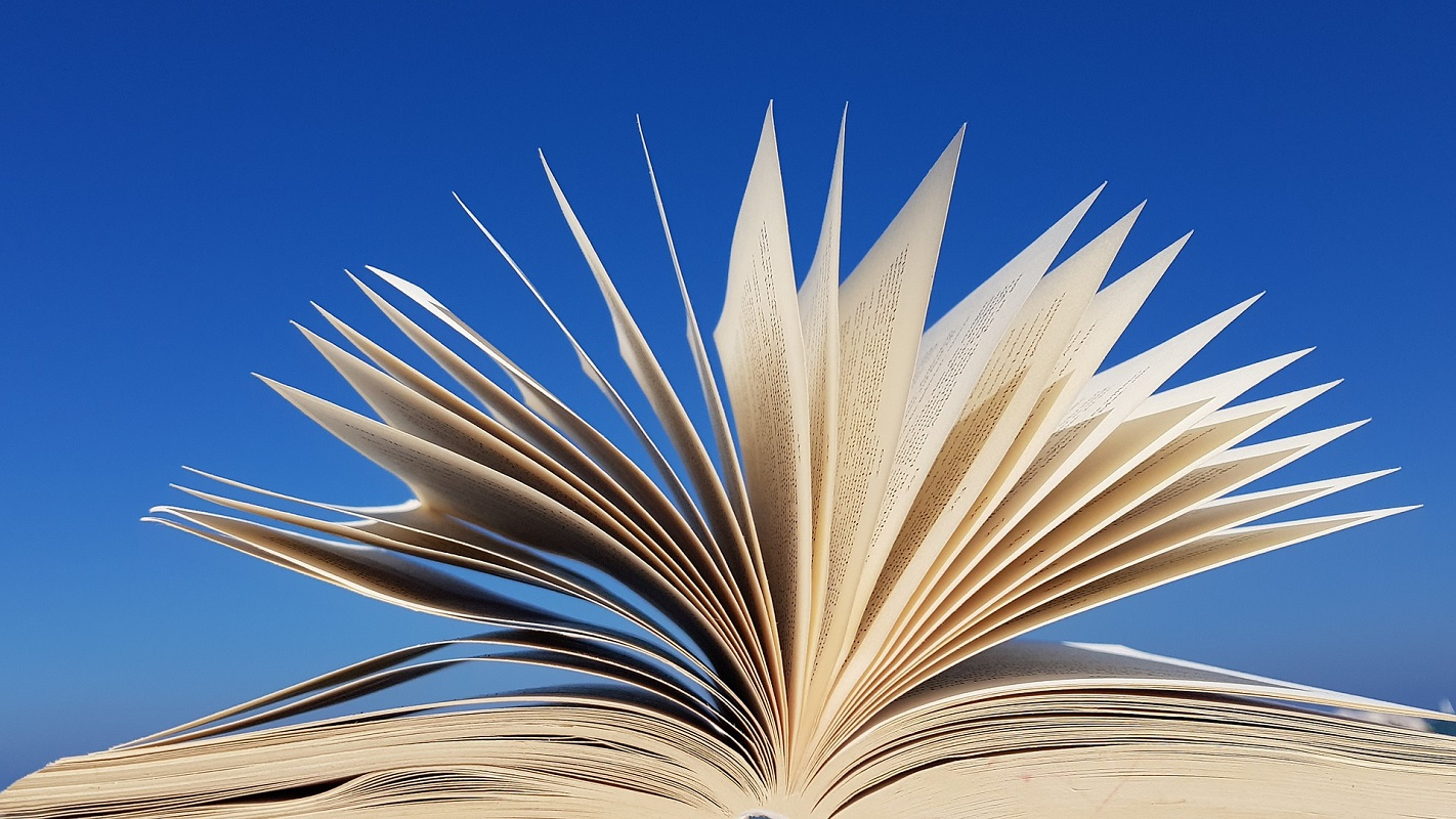 Divulgados os vianenses vencedores do Concurso Nacional de Leitura