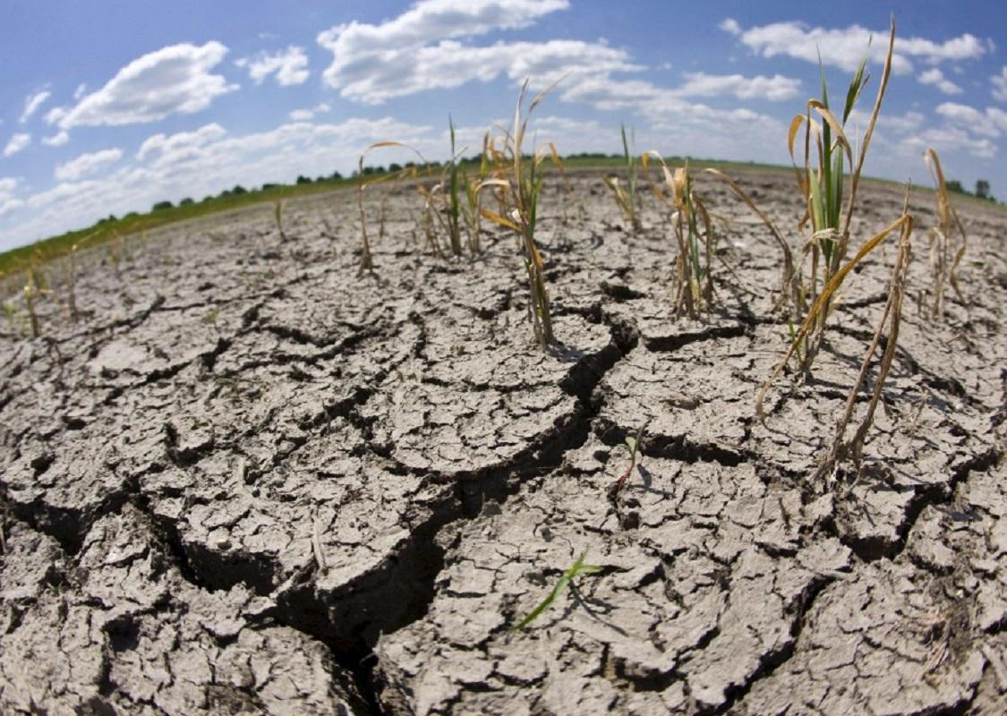 Portugal continental com aumento da área em seca meteorológica no final de agosto